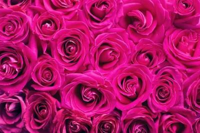 Flores a domicilio: ventajas de este servicio contratado online
