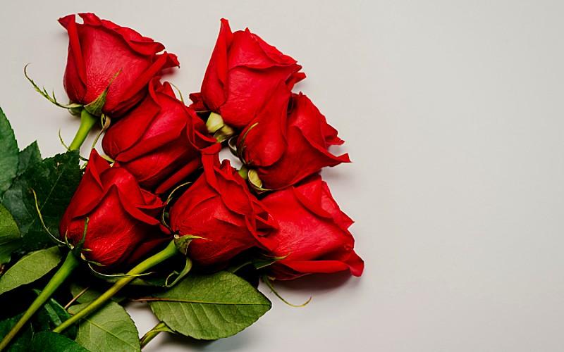 ¿Que cantidad de rosas debo colocar en mis ramos?
