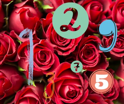 Rosas rojas significado del número regalado.