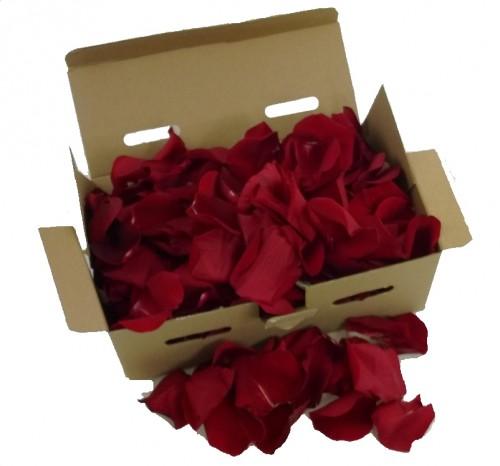 Caja Pétalos Rojos