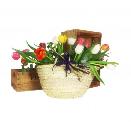Capazo Tulipanes