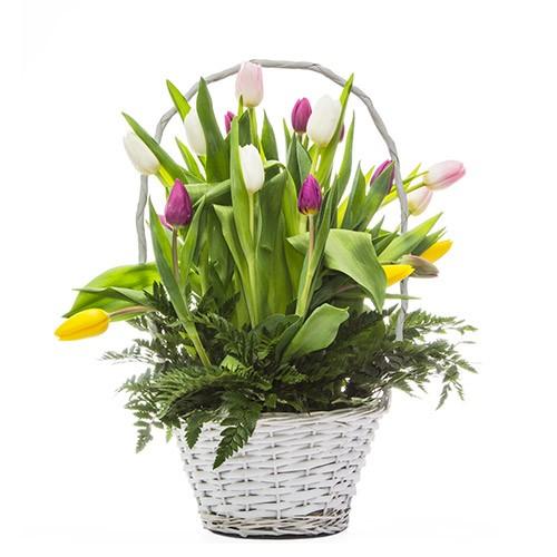 Cesta Tulipanes