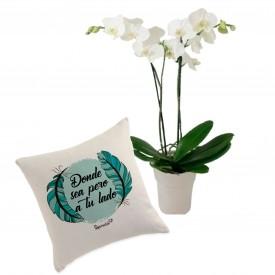 Pack Orquídea a tu lado