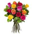 PACK Todo va a salir bien 12 rosas variadas + Taza