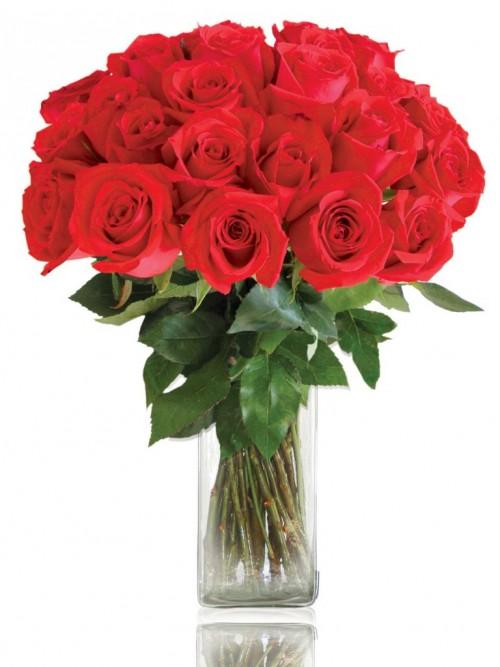 Ramo 24 rosas rojas instaflor