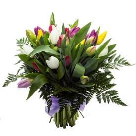Ramo 25 Tulipanes