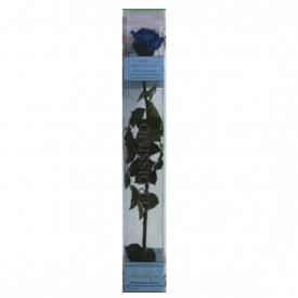 Rosa Eterna Azul Caja